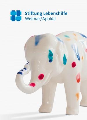 LHW_Flyer_Elefant.indd